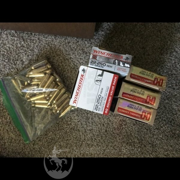 22-250 rounds